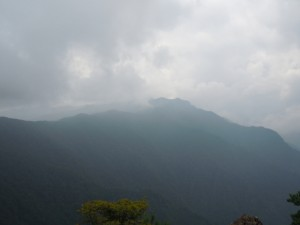 この時点では向こうに見える山まで歩く予定でした