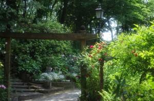 日本経済大学の庭です