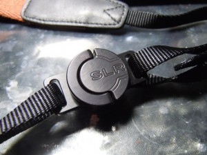 C-Loop