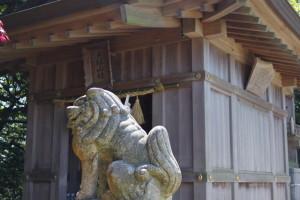 天拝山頂の神社です