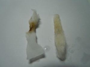 右がKendo Vape Cotton、左がFiber Freaks