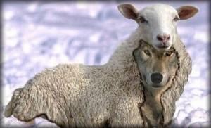 羊の皮を被った狼になりたいです