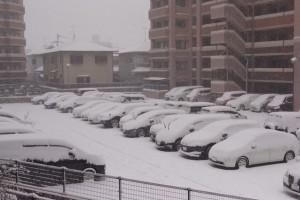 駐車場も真っ白